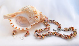 Still-life with sea shell and jewelers. Royalty Free Stock Images
