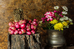 Still Life With Shallots, red onions Stock Images