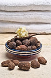 Still life of Shea nuts Royalty Free Stock Images