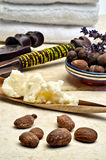 Still life of shea nuts and butter. Still life with shea nuts and shea butter used for cosmetic products Stock Photography