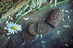 Still life- sheaf of oats, chamomile Stock Photography