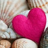Still-life with shells and heart. Still-life with shells and pink heart Royalty Free Stock Photo