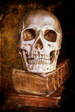 Still life with a skull. On antique books, altered with a dark grunge texture Royalty Free Stock Images