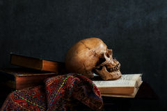 Still life skull. Still life art photography on human skull skeleton with book Royalty Free Stock Image