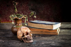 Still Life with  Skull and book,flower vase Stock Photos