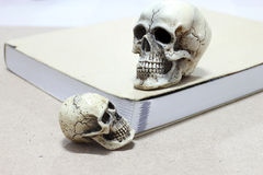 Still Life with a Skull and book on wooden table stock photos