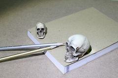 Still Life with a Skull and book on wooden table Stock Image