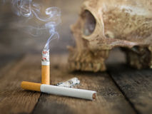 Still life skull and cigarette burned with smoke Stock Photography