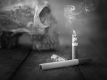 Still life skull and cigarette burned with smoke. Royalty Free Stock Image