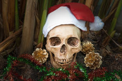 Still life with skull, dark concept. Still life with skull in christmas day, santa is coming to town, dark concept stock photos