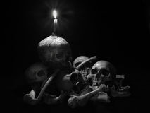 Still life skull. Still life with group of human skull and candle light on dark background Royalty Free Stock Photography