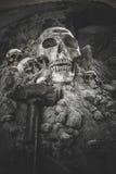 Still life of skull stock image