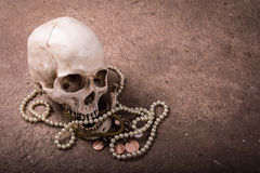 Still life skull with jewellry Stock Images