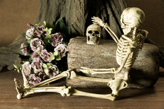 Still life with skull, love story set. Still life with human skull and flowers under the tree, dark concept, love story set, you are my love stock photography