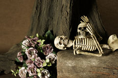 Still life with skull, love story set Royalty Free Stock Image