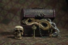 Still Life skull and small box with treasures Royalty Free Stock Image