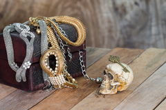 Still Life skull and small box with treasures on wooden backgrou Stock Photos