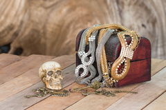 Still Life skull and small box with treasures Royalty Free Stock Images