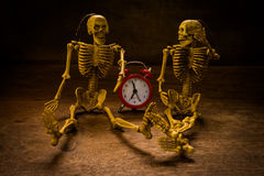 Still life skull and time Royalty Free Stock Photos