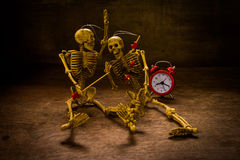 Still life skull and time Royalty Free Stock Photo