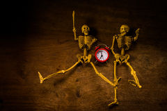 Still life skull and time Stock Image