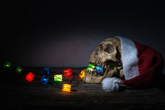 Still life skull wear santa claus hat with gift blinker. Royalty Free Stock Photos