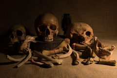 Still life with skulls and bones. Close up, dark concept royalty free stock photo