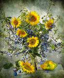Still life with a sloe and sunflowers Stock Image