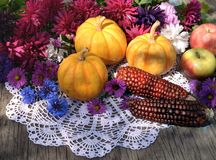 Still life with small pumpkins, red corn, apples and last autumn flowers on embroidery napkin stock photos