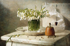 Still life with snowdrops Royalty Free Stock Images