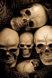 Still life soldier skull Royalty Free Stock Photo