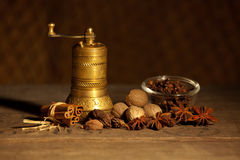 Still life with spice Royalty Free Stock Images