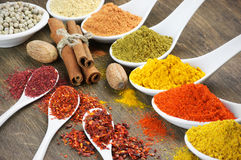 Still life with spices Stock Photography