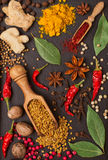 Still life with spices and herbs Royalty Free Stock Photography