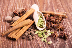 Still life with spices lie on a table. Shovel for spices including cinnamon, rice and other spices Royalty Free Stock Images