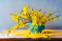 Still life spring bouquet yellow forsythia Royalty Free Stock Images