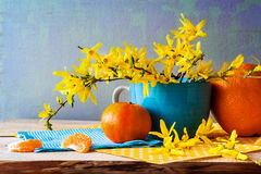 Still life spring bouquet yellow forsythia oranges Stock Images