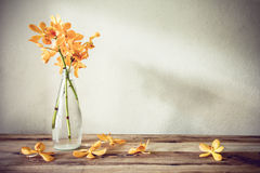 Still life with spring flowers Royalty Free Stock Photography