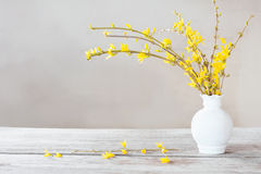 Still life with spring flowers Royalty Free Stock Image