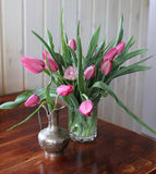 Still life with spring  tulip's Royalty Free Stock Image