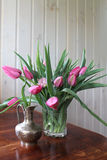 Still life with spring  tulip's Royalty Free Stock Images