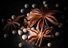 Star anise, white pepper, on a dark background royalty free stock photos