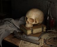 Still Life, Still Life Photography, Bone, Skull Royalty Free Stock Photos