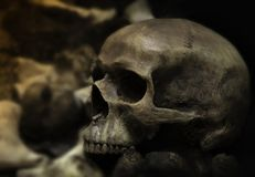 Still life style ;Skulls of bones with candle at night .Halloween day Royalty Free Stock Photo