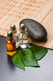 Still-life Subjects Of Relaxing Spa Stock Image