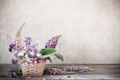 Still life with summer flowers Royalty Free Stock Photos