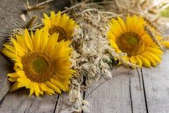 Still Life Of Summer Harvest Royalty Free Stock Images