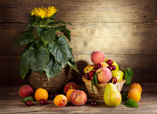 Still life with sunflower and fresh fruits Stock Photo