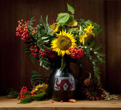 Still Life with Sunflower Royalty Free Stock Photography