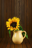 Still life with sunflower in vase on wooden background. Royalty Free Stock Photography